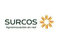 Sucursal Online de  Surcos
