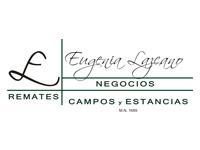 Sucursal Online de  Eugenia Lazcano Campos y Estancias