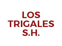 Sucursal Online de  Los Trigales