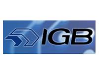 IGB Tecnología