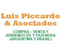 Luis Piccardo & Asociados
