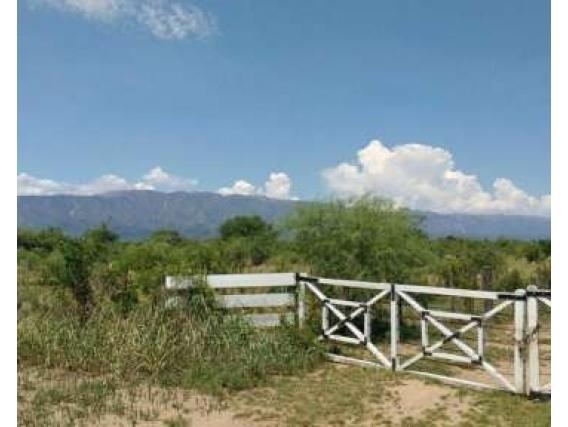 1.336 Has En Luján- San Luis- S/ruta C/mejoras