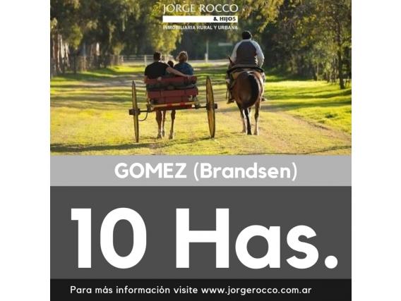 10 Has En Gomez, Brandsen