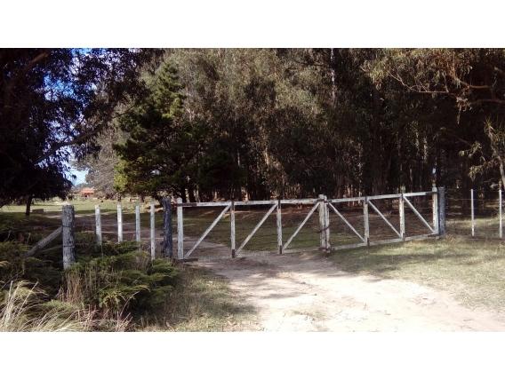 Casa de campo de 12 has en Lobería, Provincia de Buenos Aires.