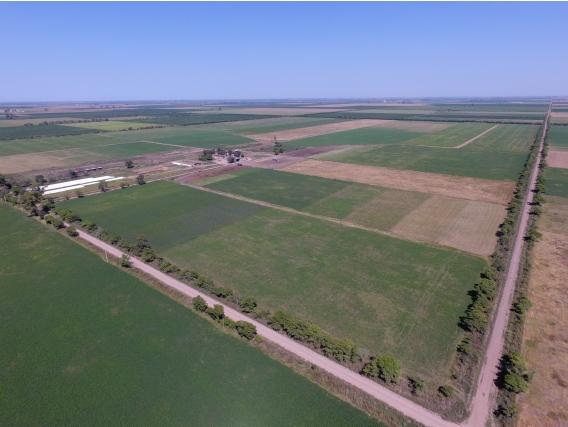 130 Has Tambo/agrícola Zona Ramona