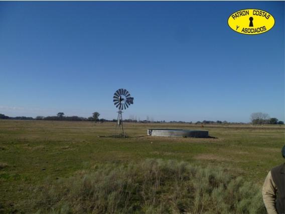 1434Hp Venta Campo 6 Has San Andres De Giles 16Km De R7