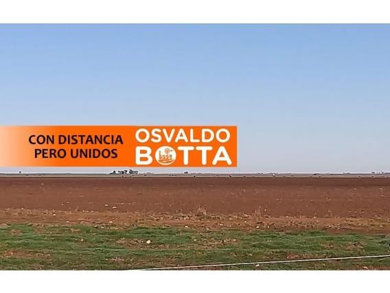 230 Hectáreas En Ranqueles, Córdoba