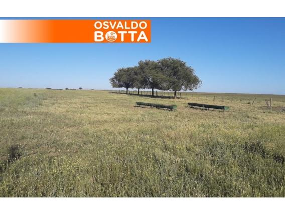400 Hectáreas En Santa Rosa, La Pampa