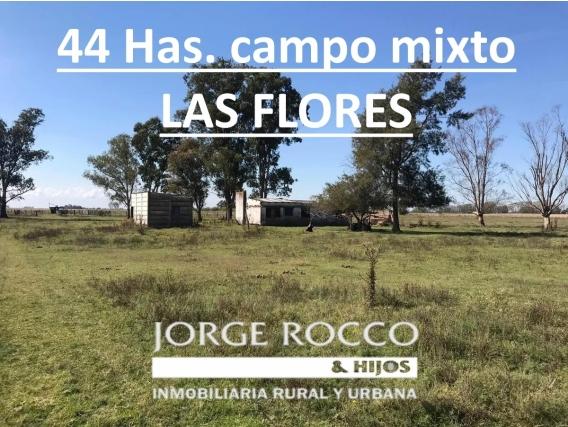 44 Mixtas En La Flores