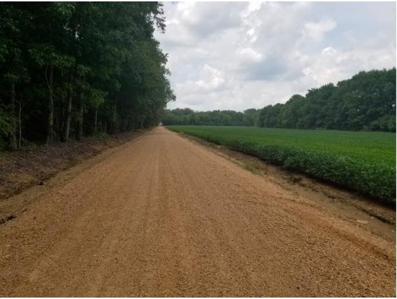 Campo en venta en Mississippi, USA. 445 Has - 100 Agricolas