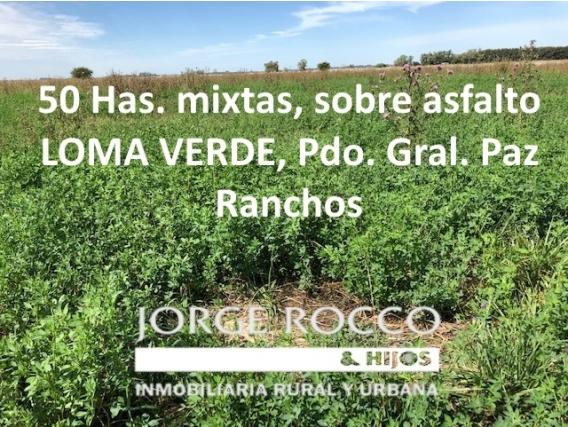 50 Has. Mixtas, Sobre Asfalto En Loma Verde - Ranchos