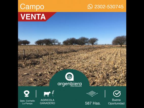 587 Has. - En Venta - Dpto. Conhello - La Pampa