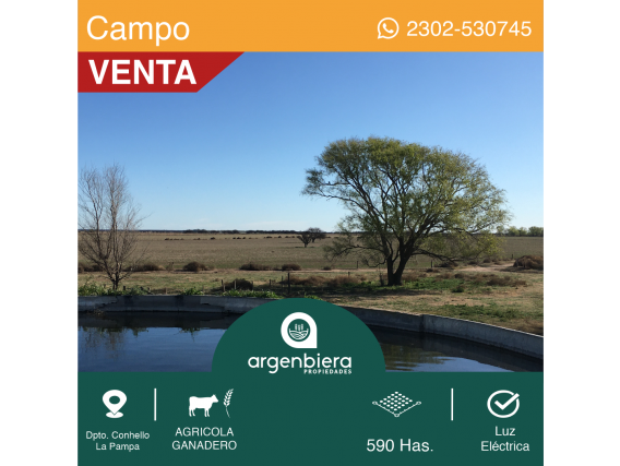 590 Has. Dpto. Conhello - La Pampa