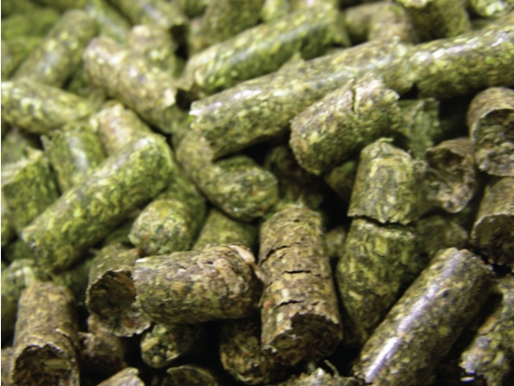 Pellets de Alfalfa