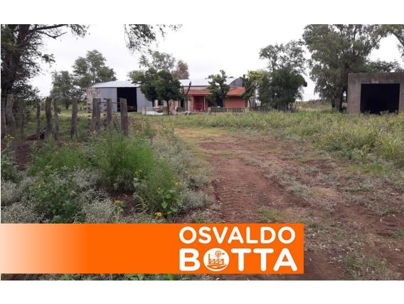 600 Hectáreas Winifreda, La Pampa