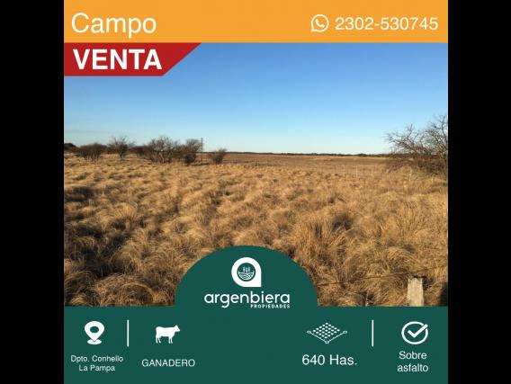 640 Has - En Venta - Dpto. Conhello Campo Ganadero.