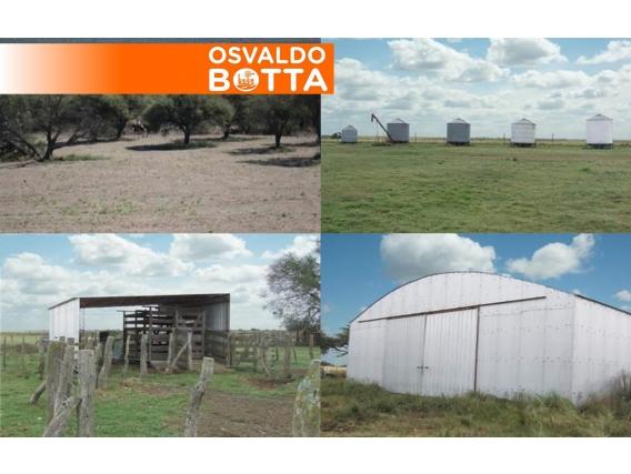 7425 Has En Guatraché, La Pampa