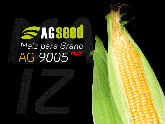 Maíz AG 9005 Plus