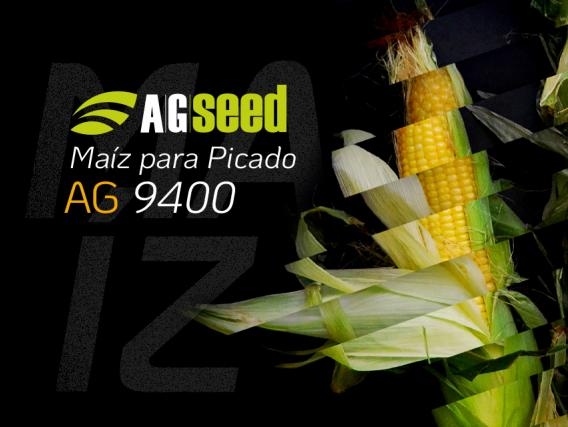 Maiz AG 9400 - Picado