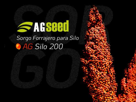 Sorgo AG Silo 200