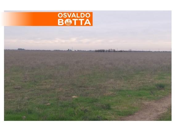 89 Has Colonia Sabadel, La Pampa