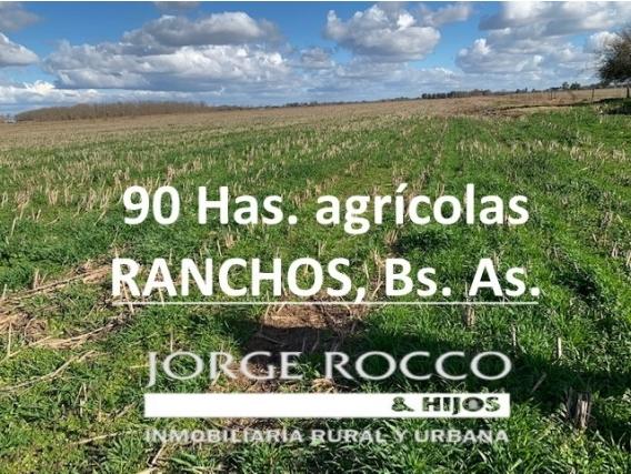 90 Has. Excelente Campo Agrícola De La Zona - Ranchos