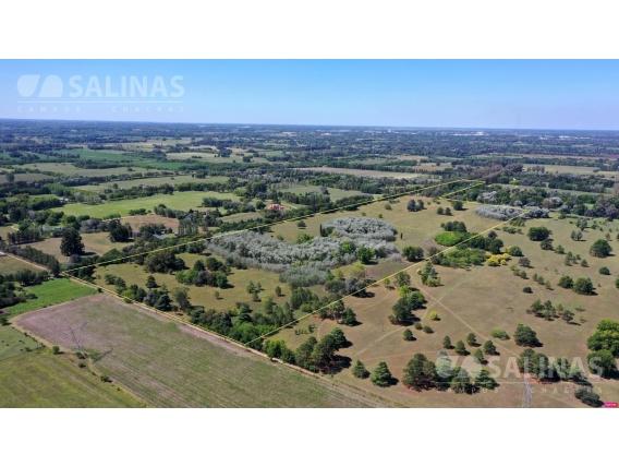Campo De 30 Hectareas En Pilar