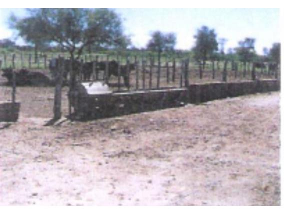 Campo En Venta En Gral San Martin 4222 Has