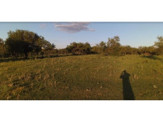 Campo de 1 Has en San José Cerca de Autovia