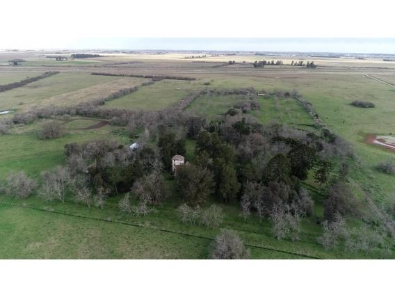 Campo de 1300 hectareas en Dolores