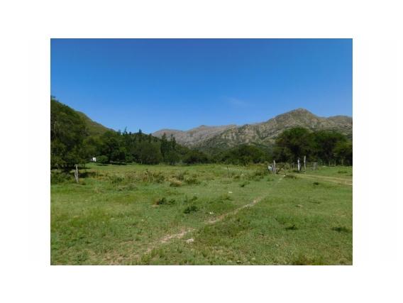 Campo de 135 Hectareas en Villa Larca- San Luis