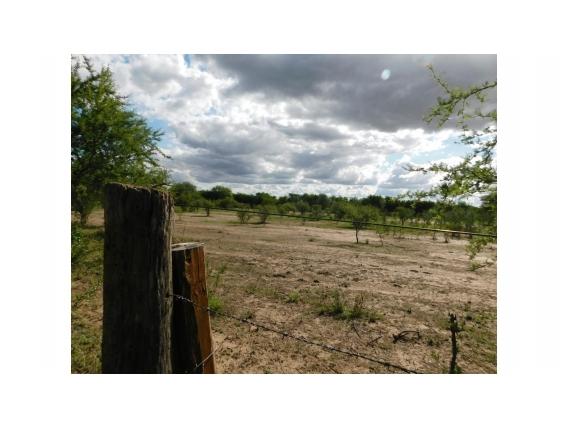 Campo de 25 Hectareas a 1 Km de Merlo- San Luis