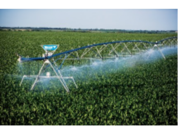 Pivote Central Valley Irrigation
