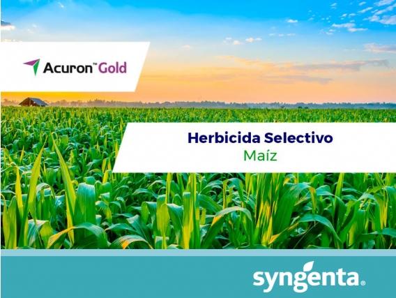 Herbicida Acuron® Gold