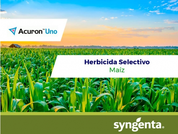 Herbicida Acuron™ Uno