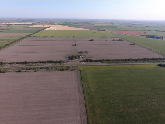 Agrícola 97 Ha. Sobre Ruta, Zona Estancia La Pelada Sf.