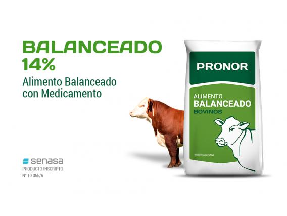 Alimento Balanceado 14% Pronor
