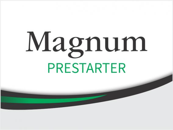 Alimento Balanceado Magnum Prestarter F1