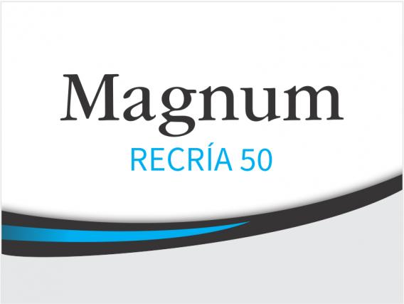 Alimento Concentrado Magnum Recría 50