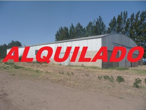 Alquilo Galpón - Zonificación Industrial 2 - Zárate