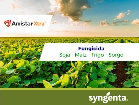 Fungicida Amistar Xtra® - Syngenta