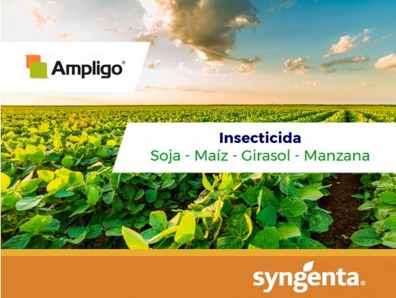 Insecticida Ampligo ®