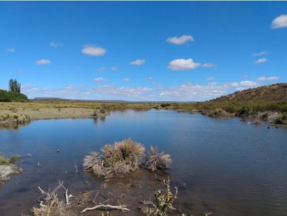 Arroyo Verde, Valcheta, Río Negro, Estancia Ovina