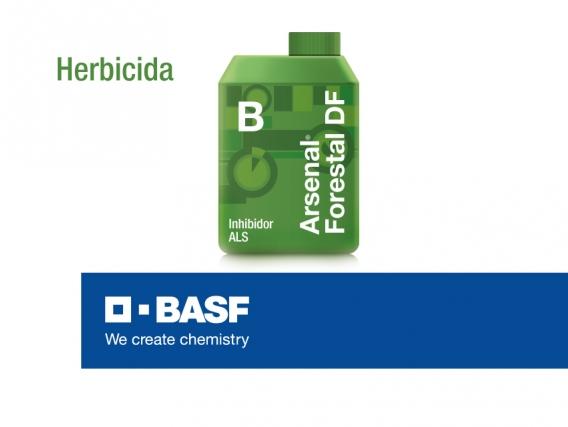 Herbicida Arsenal Forestal® Df