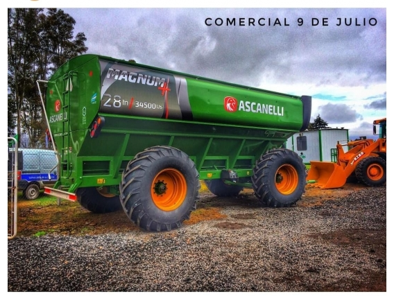 Autodescargable Ascanelli 28 Tn - 9 De Julio, Bs As