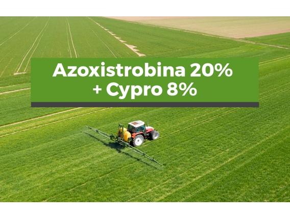 Fungicida Azoxistrobina Cyproconazole