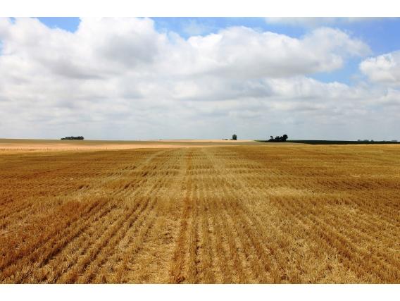 Ba3398 440 Has. Agricolas Tandil Buenos Aires