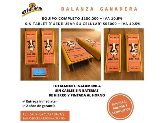 Balanza Ganadera