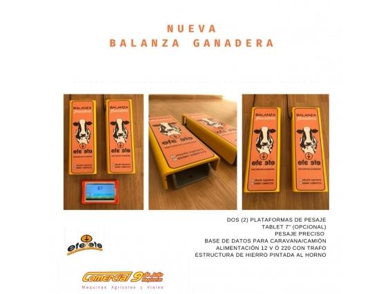 Balanza Para Hacienda Efeyefe - 9 De Julio