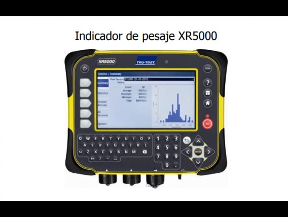Balanza Tru Test Xr5000
